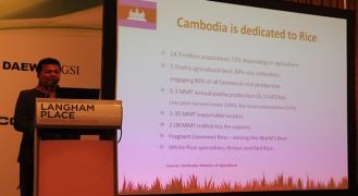 b_330_180_16777215_00_images_articles_activities_presents-_about_Cambodia_Rice.jpg